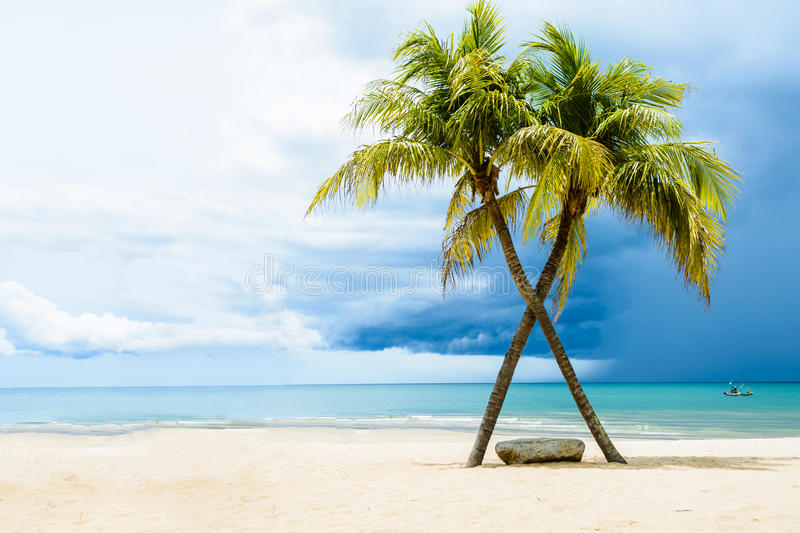 Piękna plaża z palmami obraz royalty free