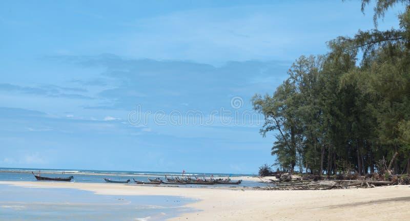 Piękna plaża z tropikalnymi drzewami z fala morze i niebieskim niebem z białymi chmurami Tajlandia Phuket zdjęcia royalty free