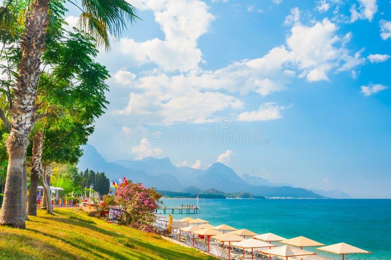 Piękna plaża z zielonymi drzewami w Kemer, Turcja zdjęcie stock