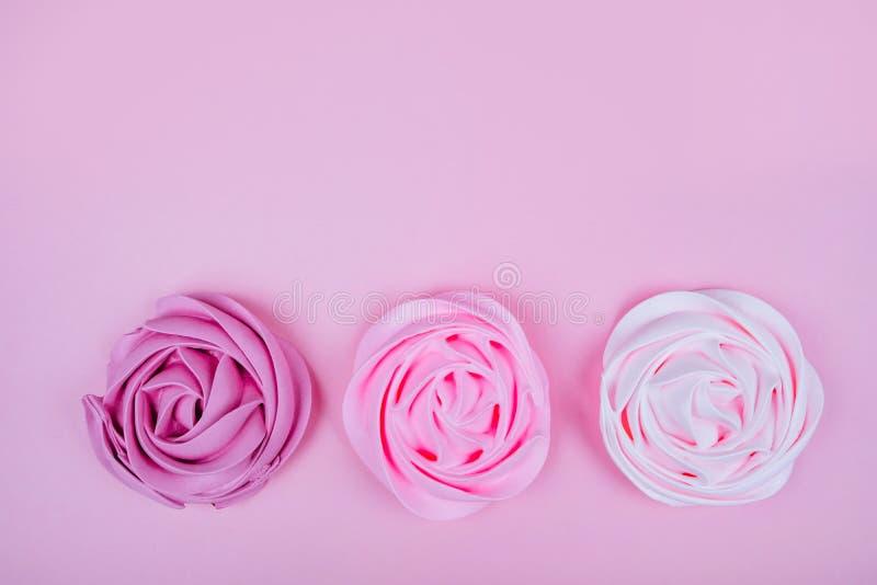 Piękna różowa beza zdjęcia stock