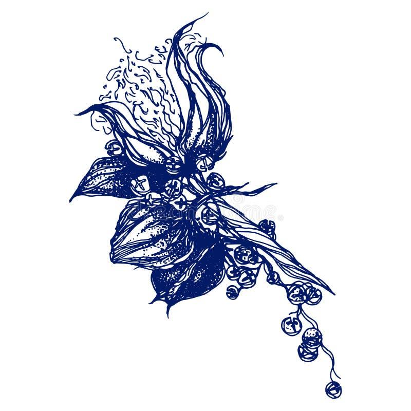 Piękna ręka rysujący wektorowy bezszwowy wzór z bawełny gałąź Ręka rysujący boho szyka stylu projekta elementy Doskonalić dla royalty ilustracja