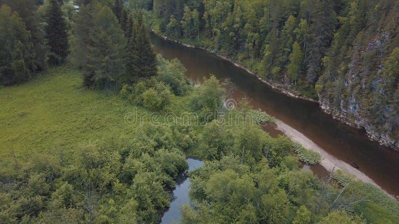 PiÄ™kna rosyjska rzeka, poÅ'ożona w pobliżu mieszanego lasu, krzewów, kwiatów i drzew na niebieskim, mÄ™tnym niebie w lecie zdjęcia royalty free