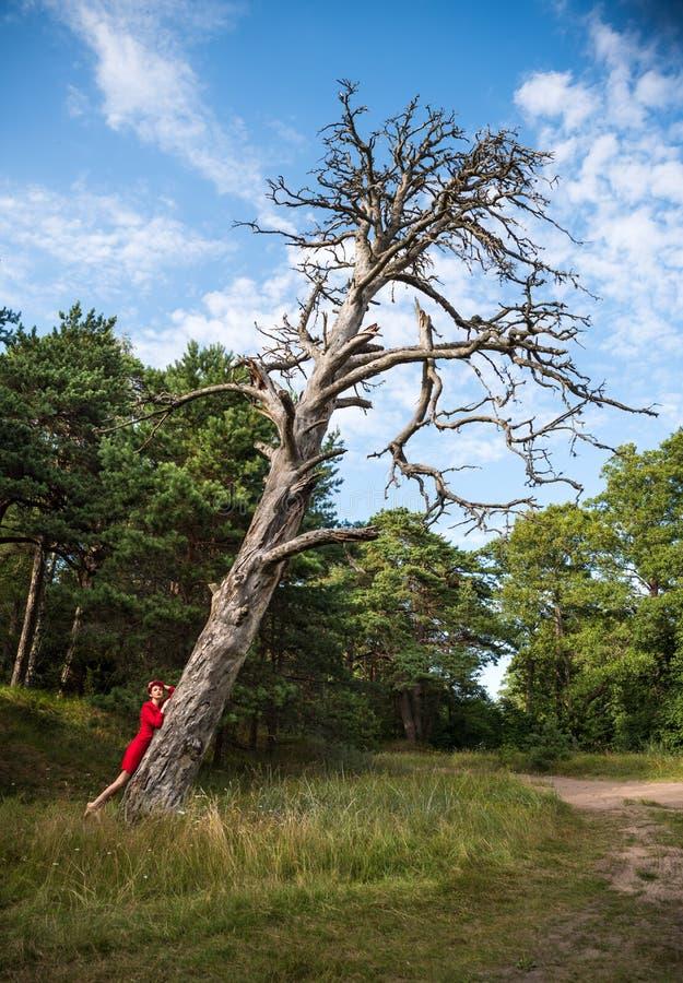 Piękna rudzielec kobieta w czerwonej pelerynie pozuje blisko starego suchego drzewa zdjęcia stock