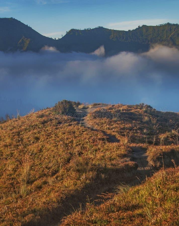 Piękna scena w dolinie Bromo Tenggera niedaleko obszaru wulkanicznego w Surabaya Indonesia zdjęcia royalty free