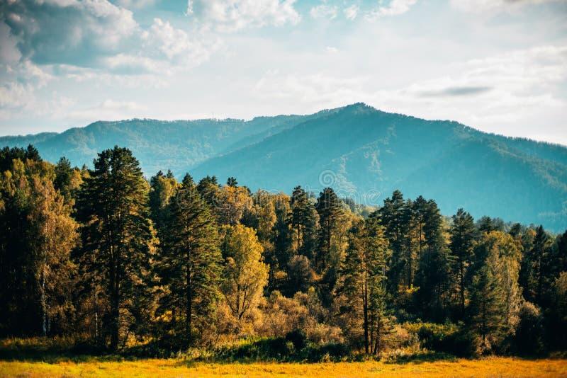 Piękna sceneria Altai góry zdjęcia stock