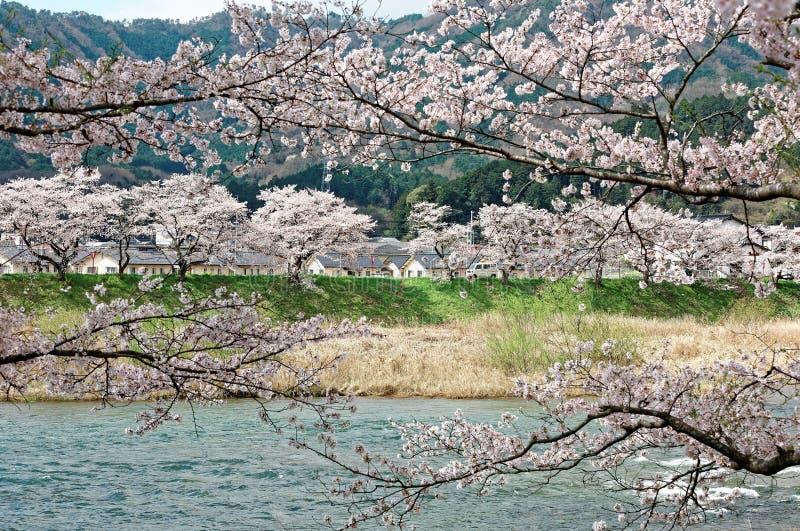 Piękna sceneria idylliczna Japońska wieś obraz stock