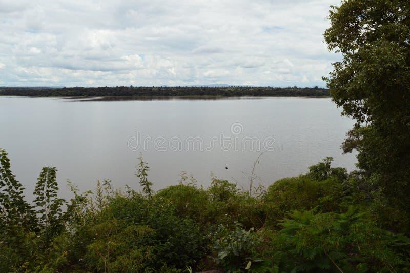 Piękna sceneria Kamuzu Dam w jednym z najbiedniejszych krajów świata - Malawi w Afryce Roślinność łuska obrazy royalty free