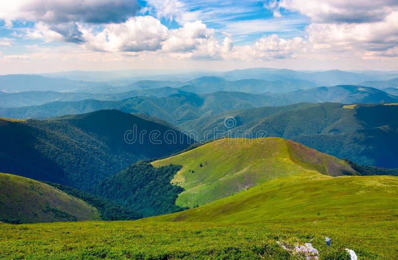 Piękna sceneria na letnim dniu w górach zdjęcia royalty free