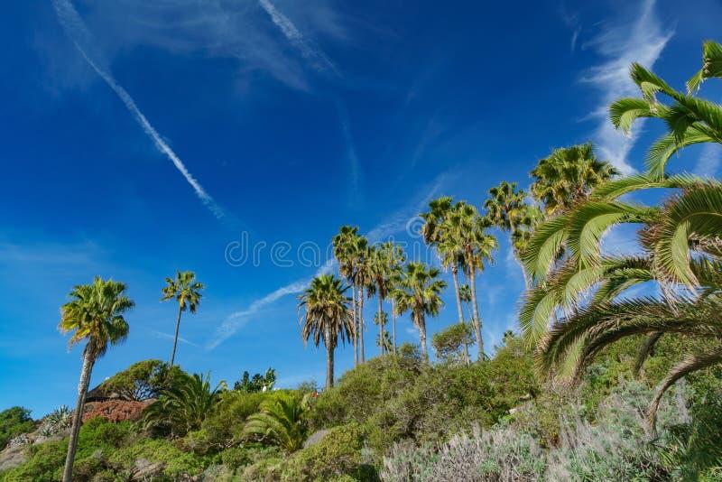 Piękna sceneria wokoło laguna beach obraz stock