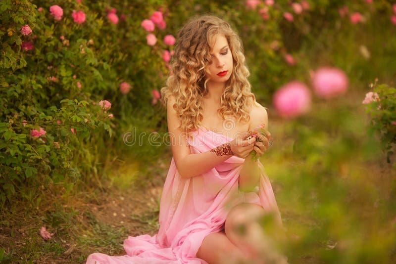 Piękna seksowna dziewczyna w różowej smokingowej pozyci w ogrodowych różach zdjęcia stock