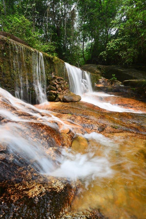 Piękna siklawa w tropikalnym lesie deszczowym obrazy stock