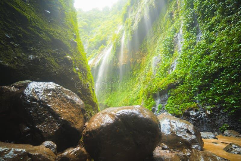 Piękna siklawa w wschodnim Java znać jako Madakaripura Spada obrazy stock
