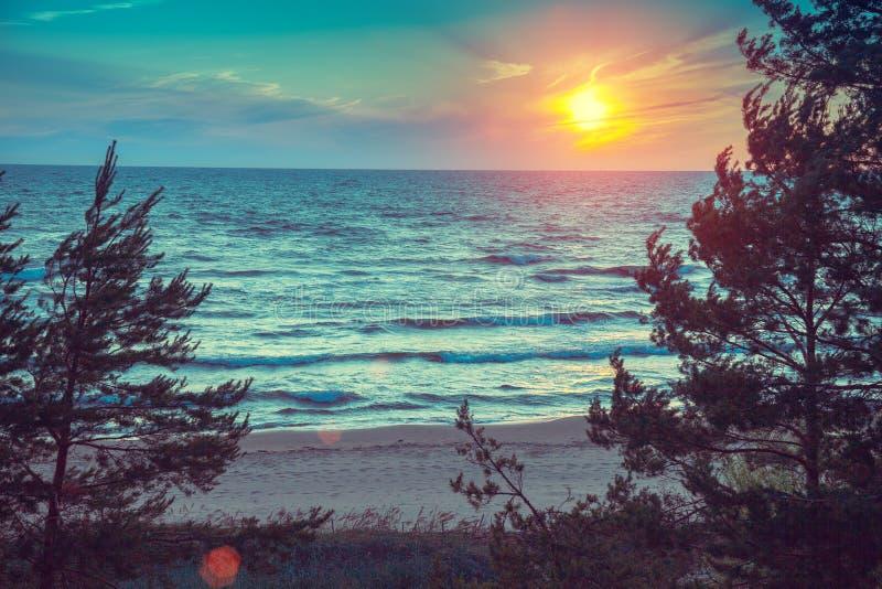 piękna, strzały lata morze słońca zdjęcie royalty free