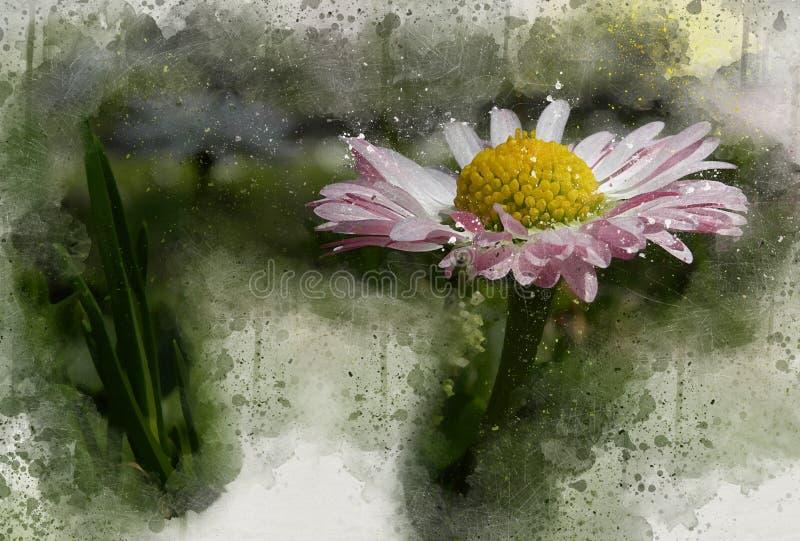 Piękna, stylizowana, biała stokrotka, malowana w kolorze wodnym ilustracja wektor