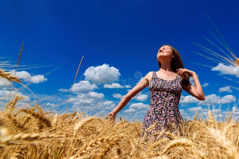 Piękna szczęśliwa młoda kobieta w złotym pszenicznym polu z chmurnym zdjęcie stock