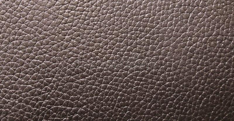 Piękna tekstura skóra jako tło obrazy stock