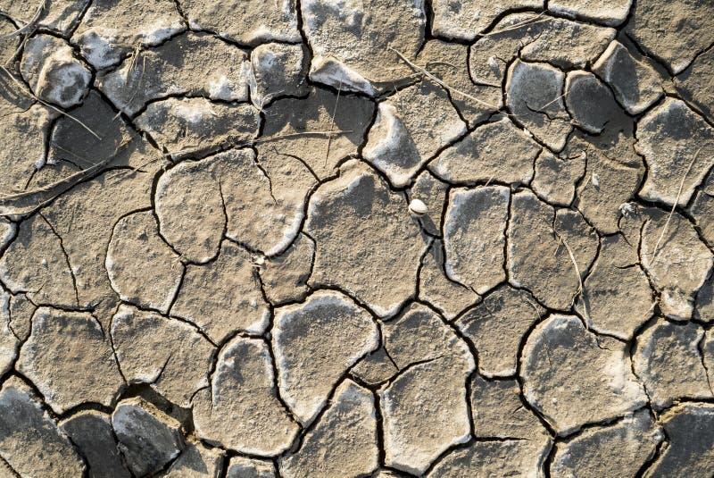 Piękna tekstura sucha glina zdjęcie stock