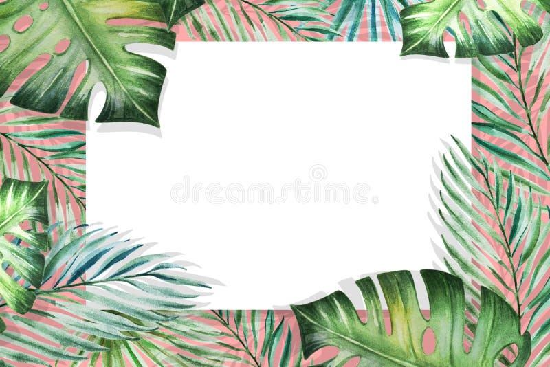 Piękna tropikalna liść granicy rama Monstera, palma adobe korekcj wysokiego obrazu photoshop ilo?ci obraz cyfrowy prawdziwa akwar royalty ilustracja