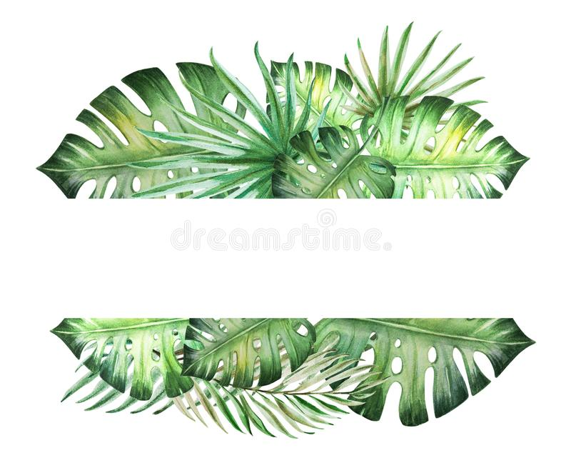 Piękna tropikalna liść rama dla teksta Monstera, palma adobe korekcj wysokiego obrazu photoshop ilo?ci obraz cyfrowy prawdziwa ak ilustracji
