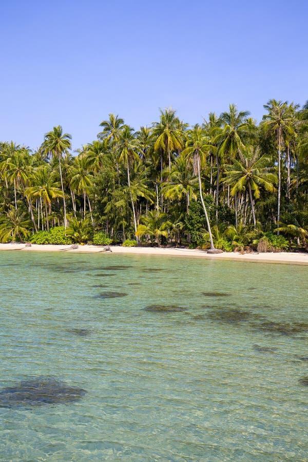 Piękna tropikalna plaża, kokosowy drzewko palmowe i czysta woda morska w Tajlandia, fotografia stock