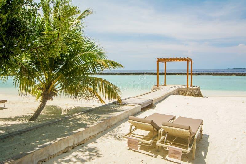 Piękna tropikalna pogodna plaża blisko oceanu z drzewkami palmowymi, sunbeds i cabana, zdjęcie royalty free