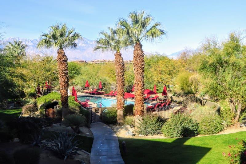 Piękna urlopowa lokacja z basenem otaczającym drzewkami palmowymi i pustynia na pięknym słonecznym dniu w palmie Dezerterujemy zdjęcie royalty free