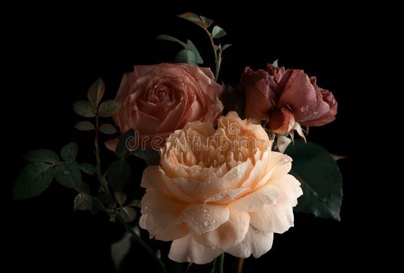 Piękna wiązka kolorowi róża kwiaty fotografia royalty free