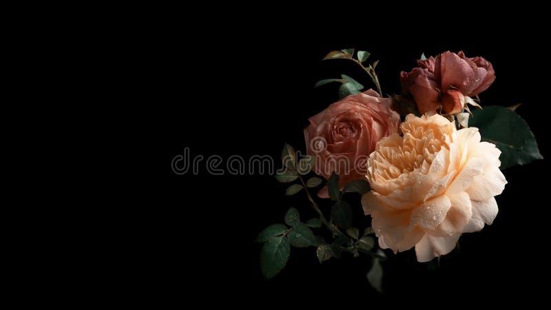 Piękna wiązka kolorowi róża kwiaty obraz stock