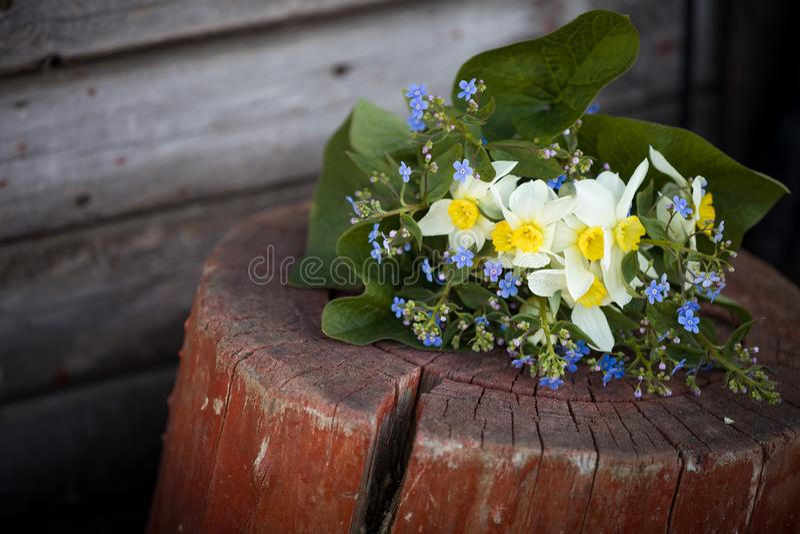 Piękna wiązka ogród kwitnie kłaść na drewnianym tle Wiosna bukiet zapomina ja nie, narcyz, daffodils obrazy stock