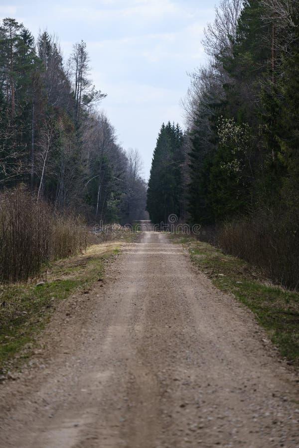 piękna wieś żwiru droga w zmierzchu zdjęcia royalty free