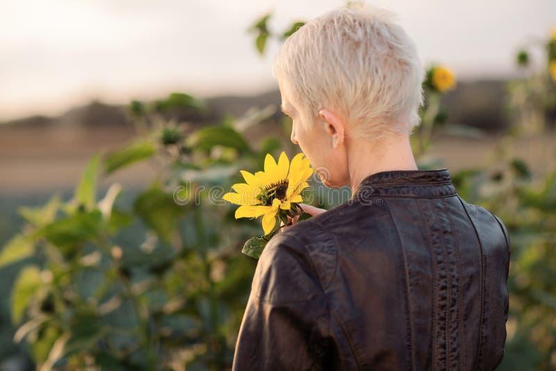 Piękna wiek średni kobieta outdoors stoi między słonecznikami w wiejskiej śródpolnej scenie fotografia stock