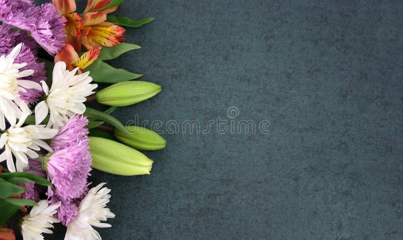 Piękna wiosna Kwitnie Nad Blackboard tłem obrazy royalty free