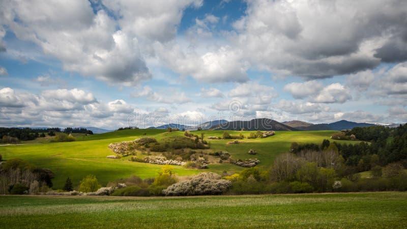 Piękna wiosna wieczór łąka, niebo z chmurami, obraz stock