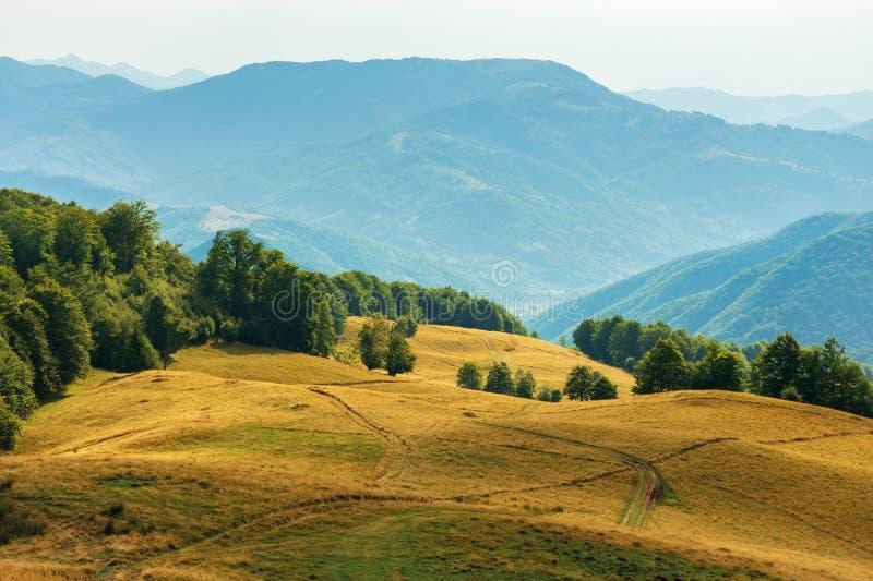 Piękna wsi sceneria w późnym lecie fotografia stock