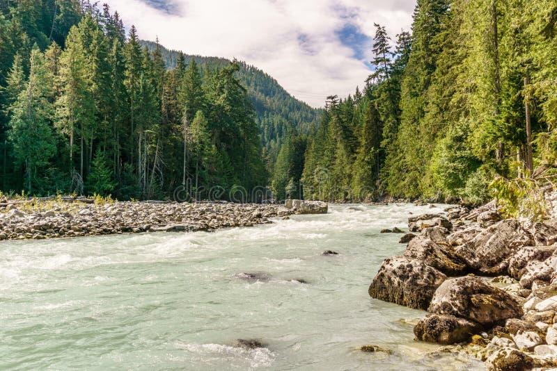 Piękna wysokiej góry zieleni rzeka w Nairn spadków prowincjonału parka kolumbiach brytyjska Kanada fotografia royalty free