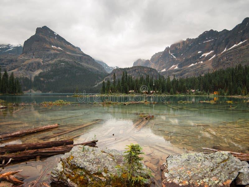 Piękna zieleni woda Jeziorny O ` Hara zdjęcie royalty free