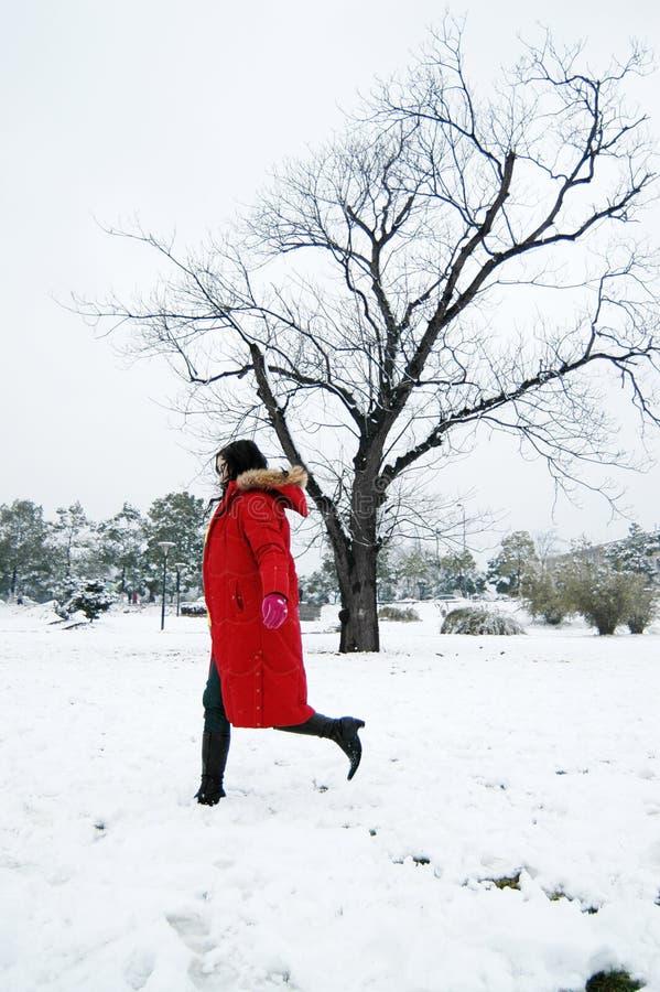 piękna zima obrazy stock
