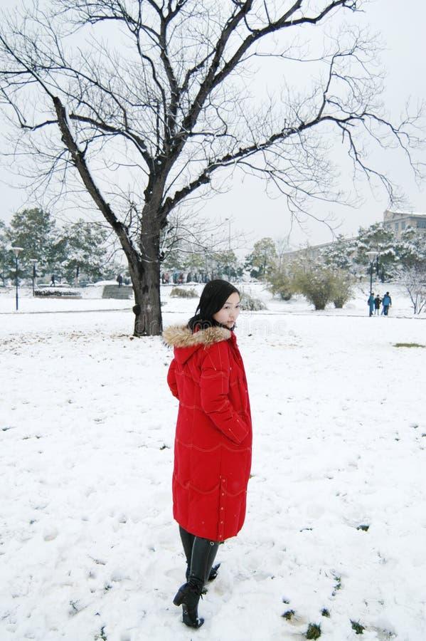piękna zima fotografia royalty free