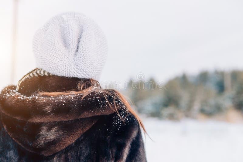 Piękna zimowa kobieta zdjęcie stock