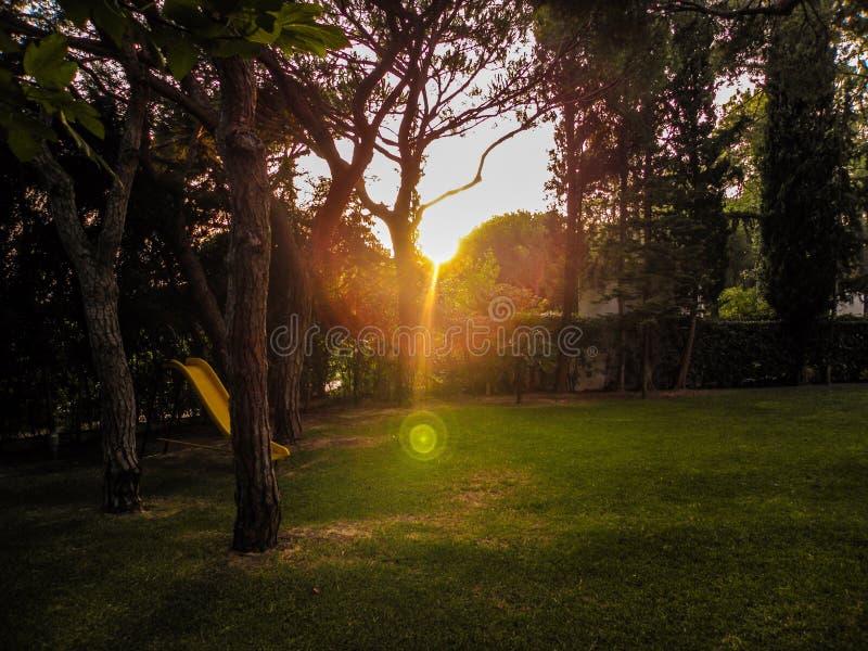 Piękna zmierzch synklina Uroczy ogród obrazy stock