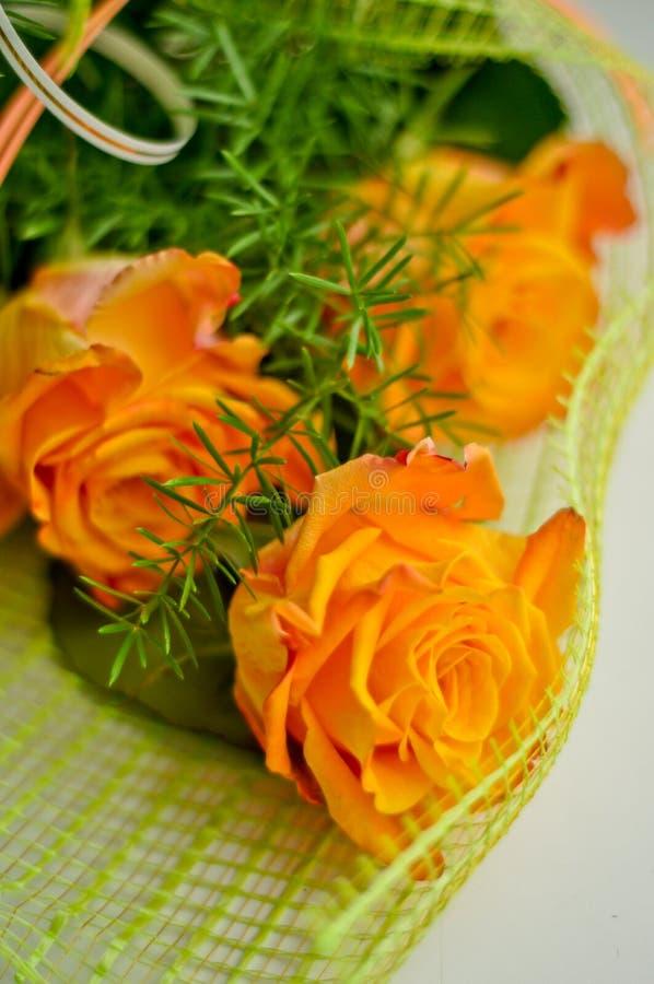 Piękne żółte róże obraz royalty free