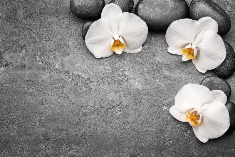 Piękne białe orchidee z kamieniami zdjęcie stock