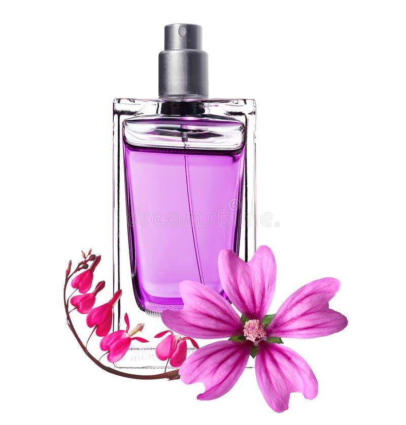 piękne butelki kwiatów pachnidła menchii kobiety obraz stock