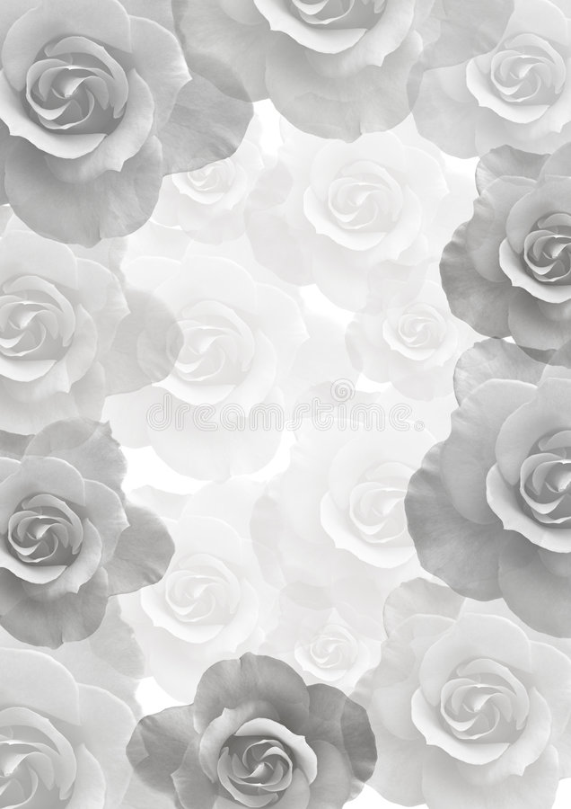 piękne, delikatne kwiaty tło ilustracji