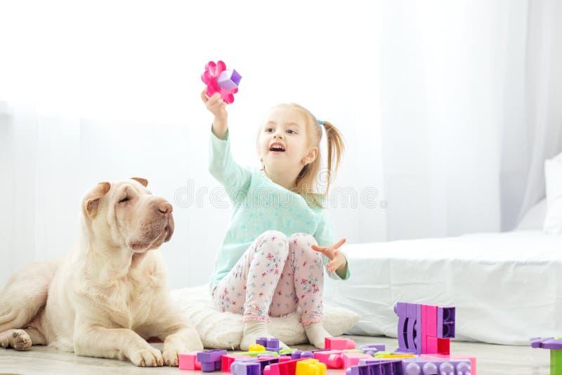 Piękne dziewczynki bawić się z klingeryt zabawki blokami Psi li zdjęcia royalty free