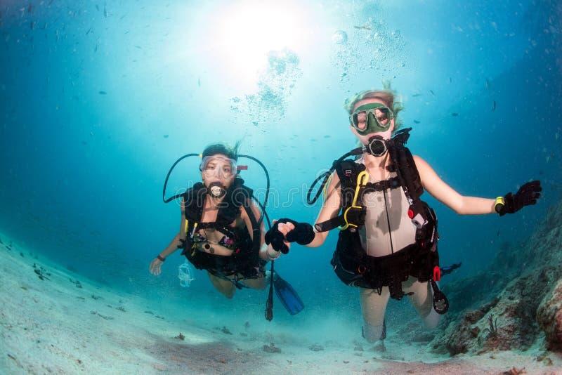 Piękne dziewczyny patrzeje ciebie podczas gdy pływać podwodny obrazy stock