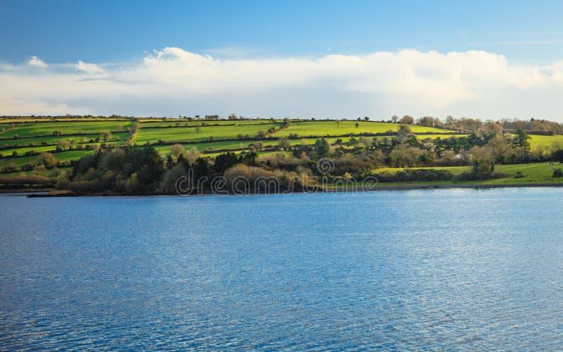 Piękne irlandczyka krajobrazu zieleni łąki przy rzeką Co.Cork, Irlandia. zdjęcia royalty free