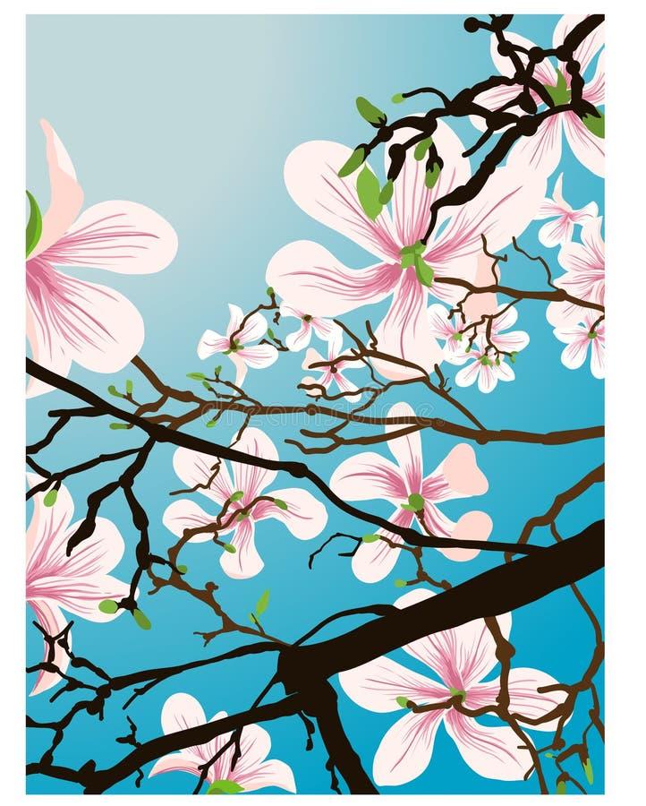 piękne kwiaty ilustracji