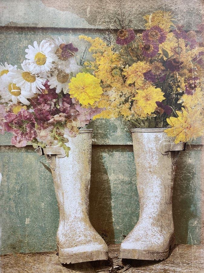 Piękne kwiaty utknięte w deszczowych butach wyciszone i chrząkające obraz royalty free