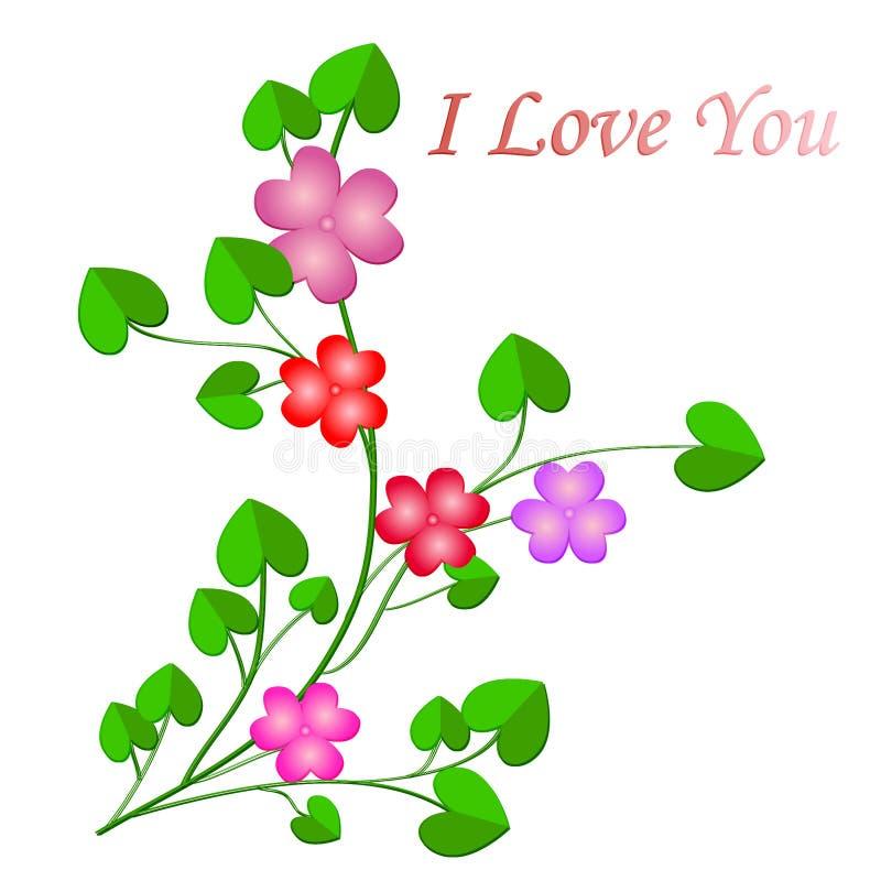 piękne kwiaty z fotografii bardzo zdjęcia royalty free